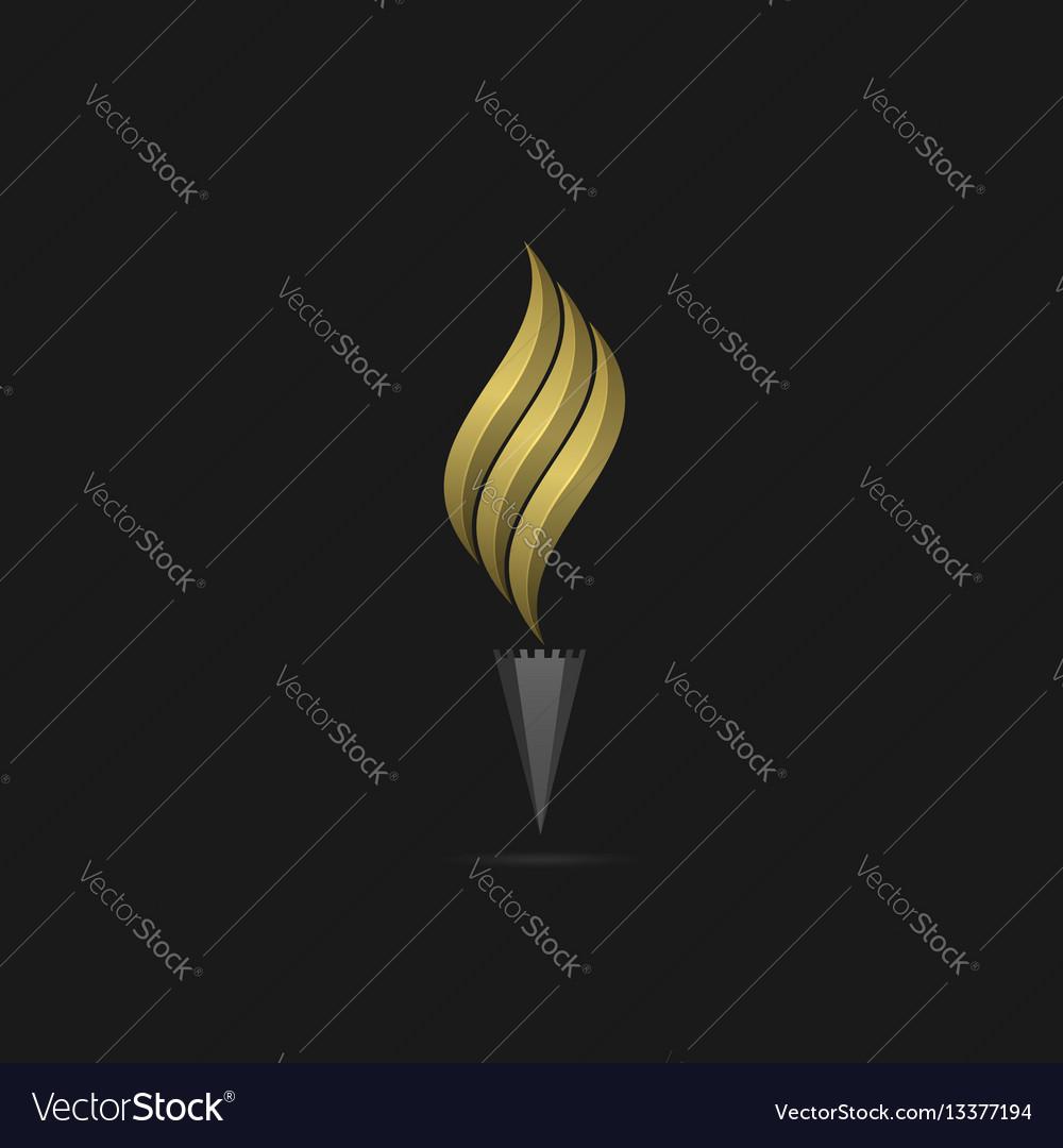 Golden flame logo template vector image