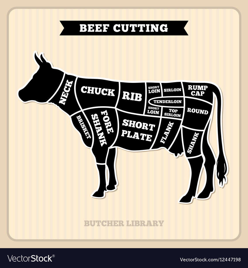 Beef cow cuts butcher diagram royalty free vector image beef cow cuts butcher diagram vector image pooptronica Gallery