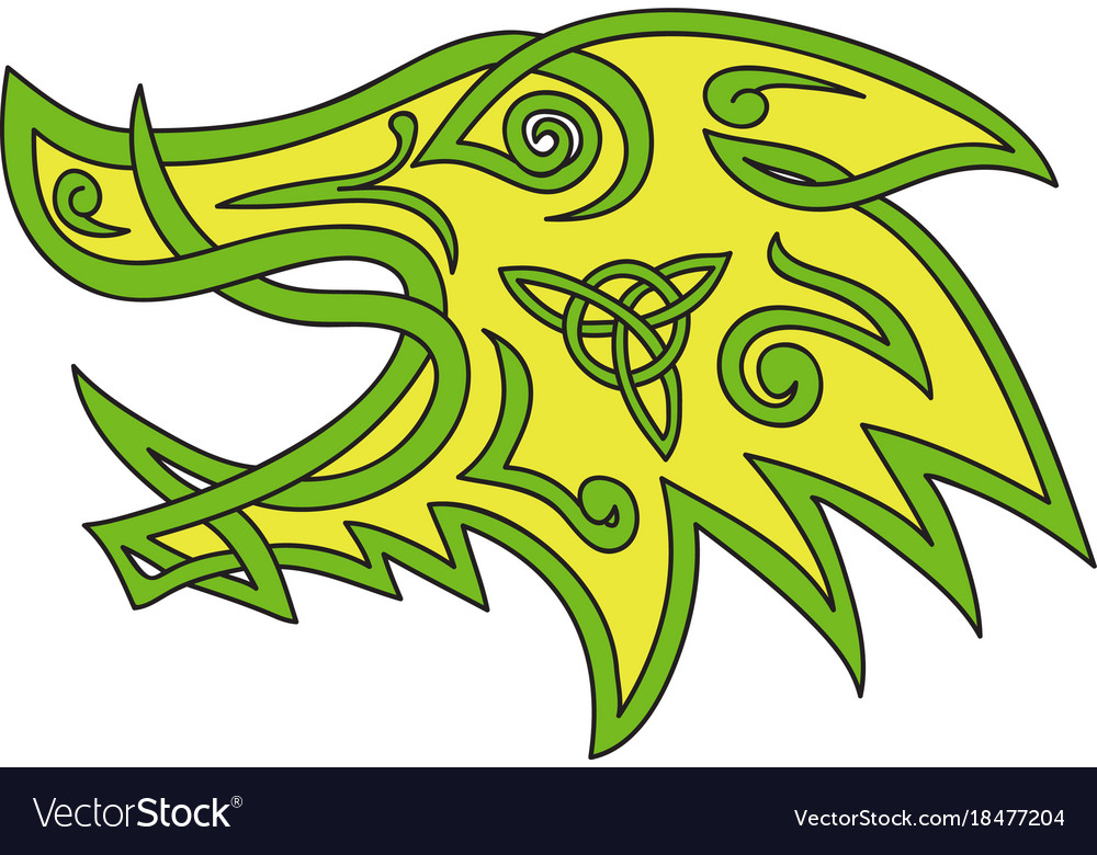 Boar head celtic knot vector image