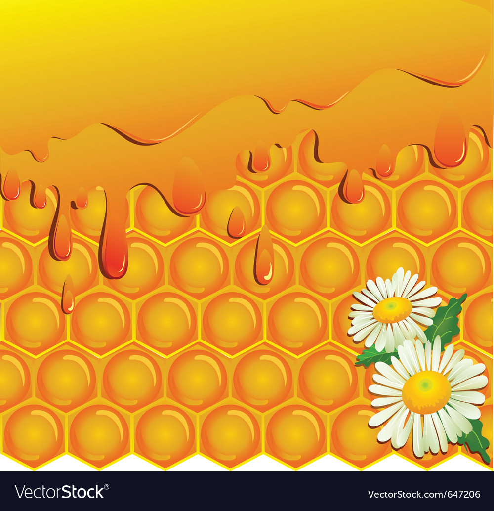Honey and honeycomb background royalty free vector image honey and honeycomb background vector image voltagebd Image collections