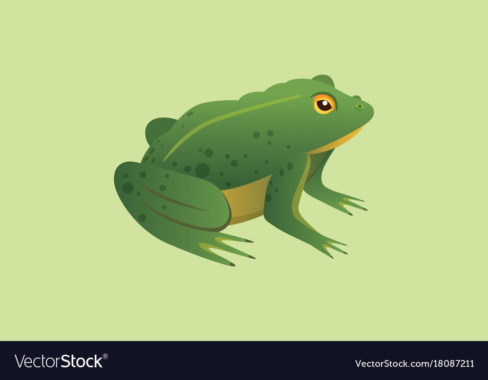 Frog cartoon isolated vector image