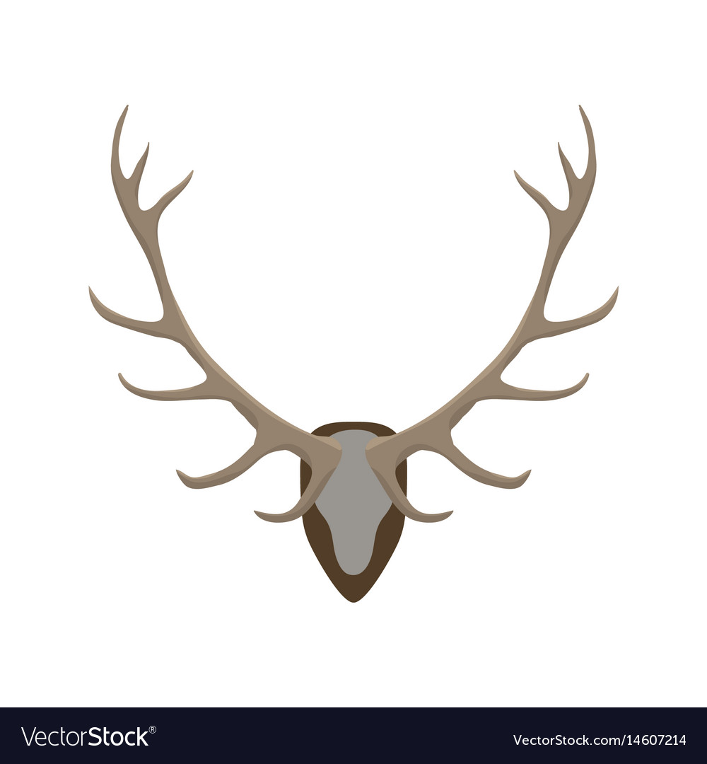 Antlers vector image