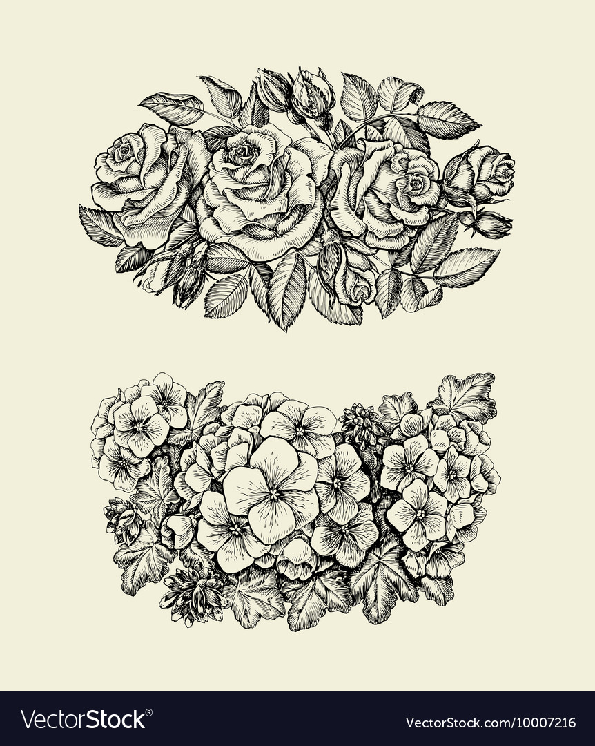 Flowers Hand drawn sketch flower roses geranium vector image