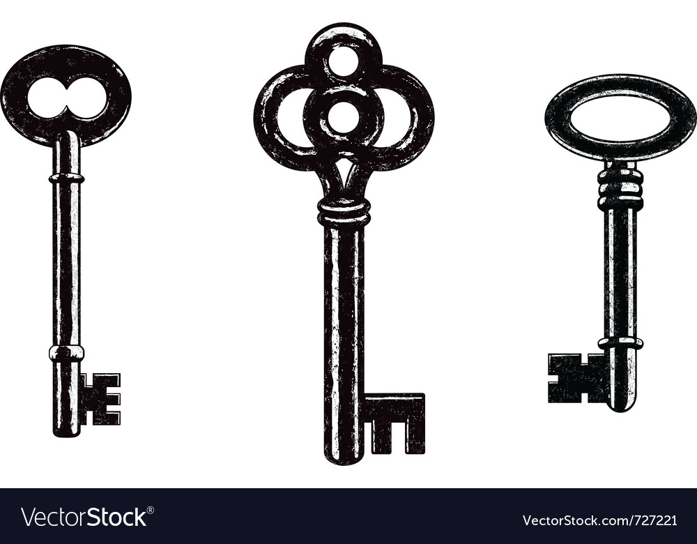 Skeleton keys vector image