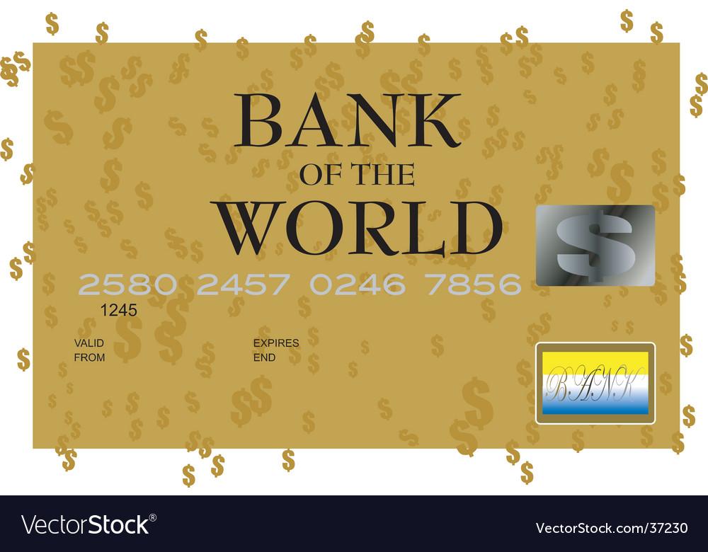 Dollar credit card vector image
