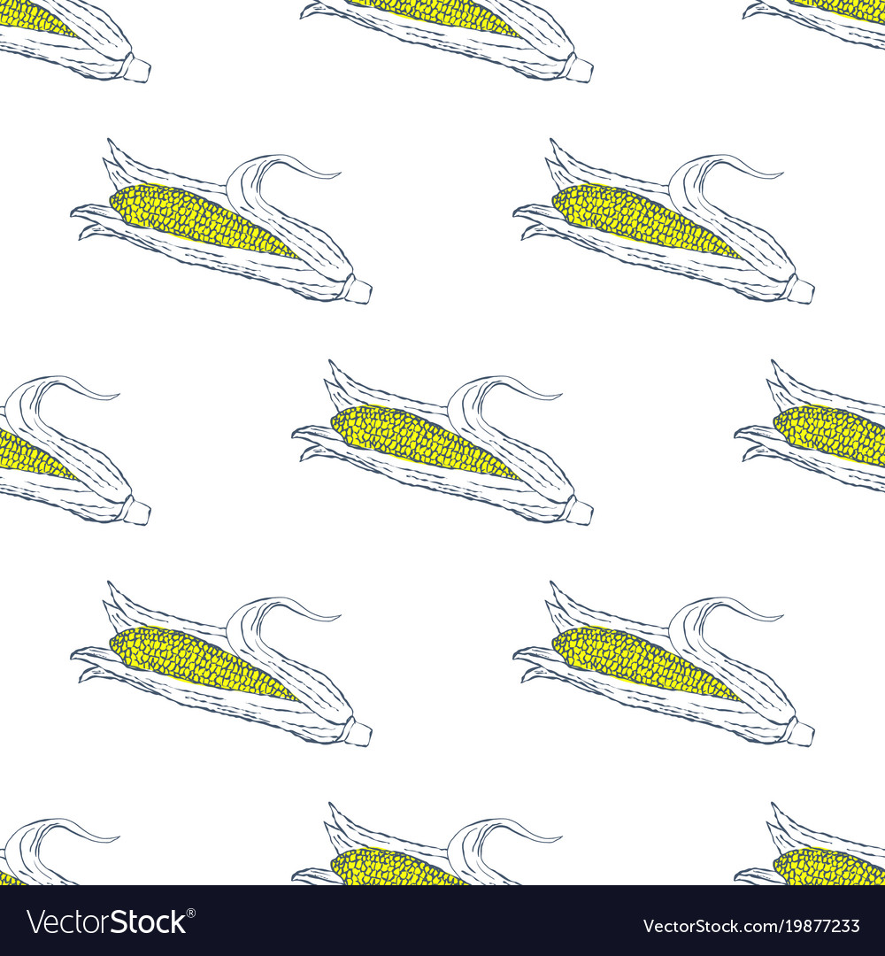 Hand drawn corn seamless pattern background vector image