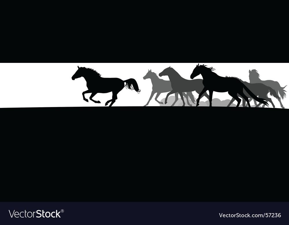 Horse herd vector image