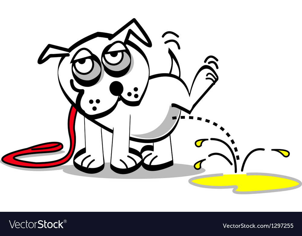 Dog peeing vector image