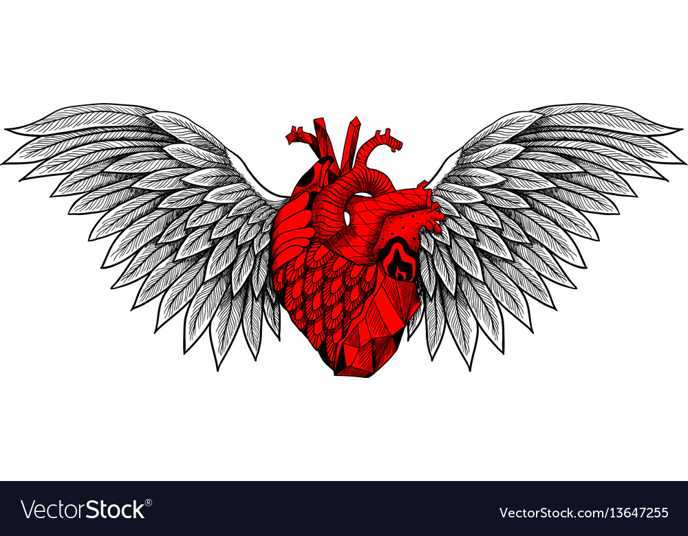 Textured heart with wings vector image
