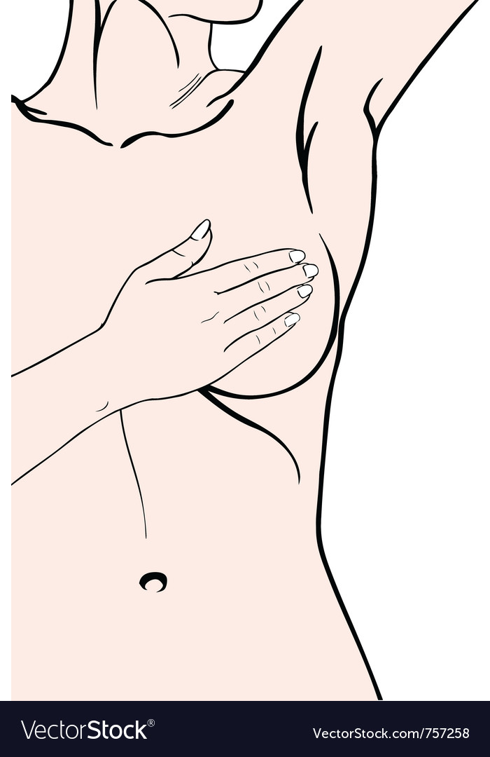 Breast exam vector image