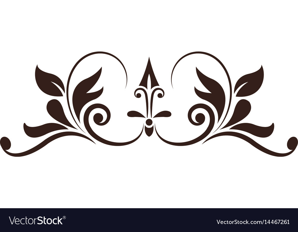 Vintage decoration element ornate image vector image
