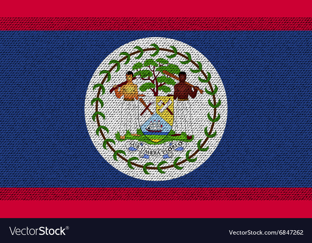flags belize on denim texture royalty free vector image