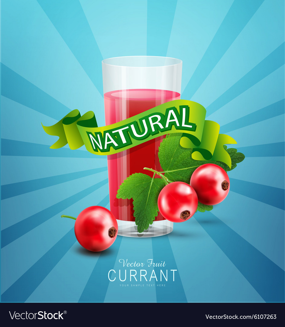 Blue background with red currants fresh juice vector image