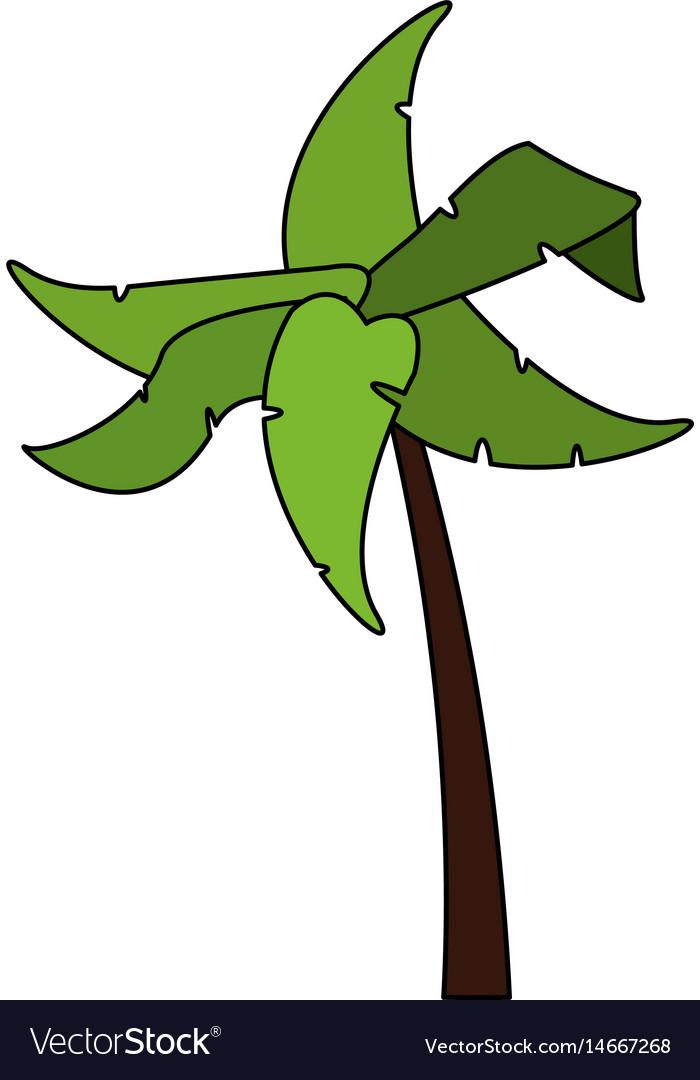 Color image cartoon tropical palm tree Royalty Free Vector