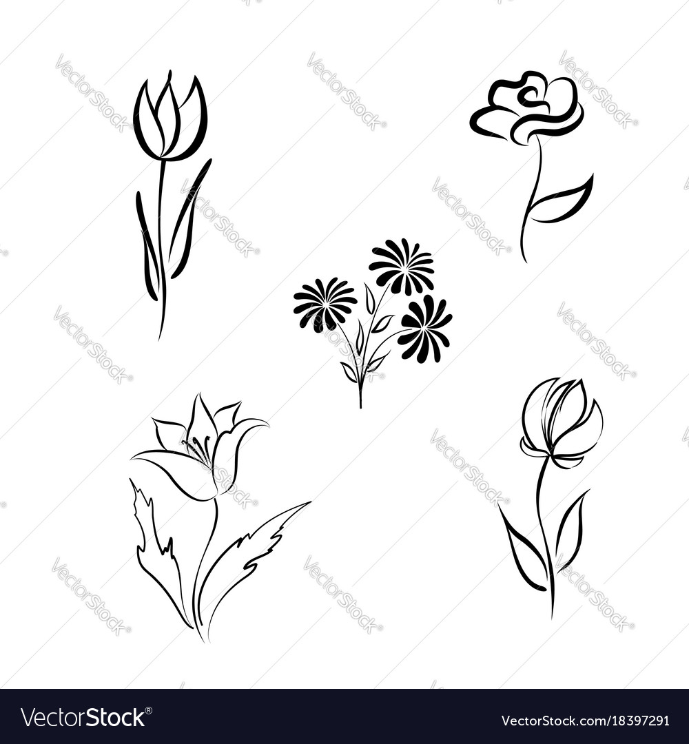 Flower set engraved floral design elements vector image
