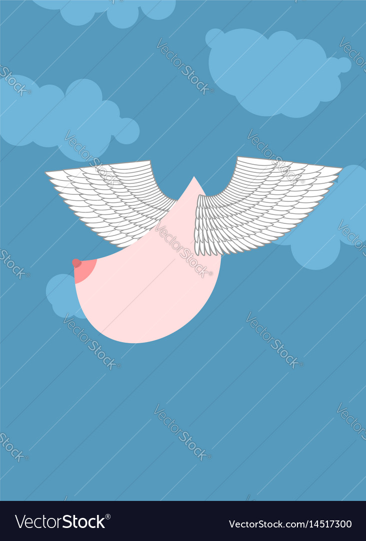 Boobs with wings flying flying tit sorority logo vector image