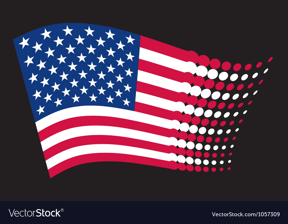 USA flag - United States of America vector image