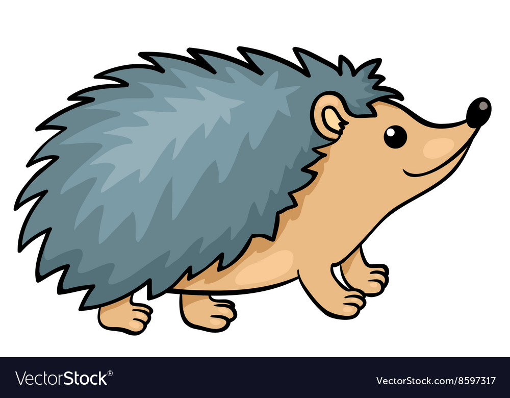 Hedgehog isolated on white vector image