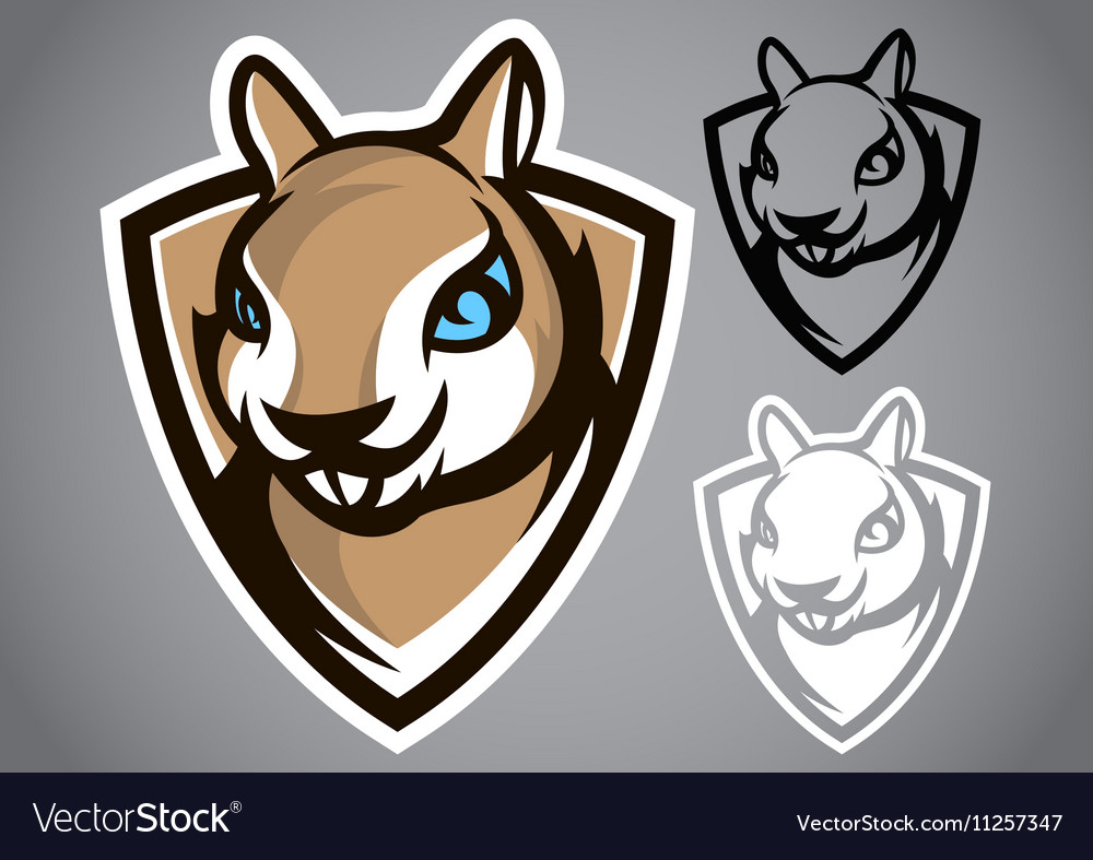 Squirrel shield gray logo emblem vector image
