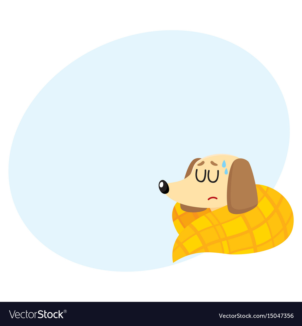 Sick baby badger dog having flu fever sleeping vector image