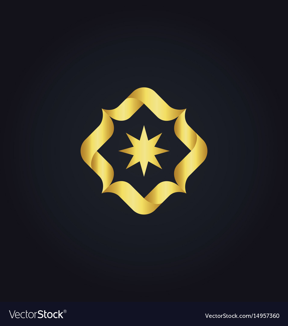 Circle star gold logo vector image