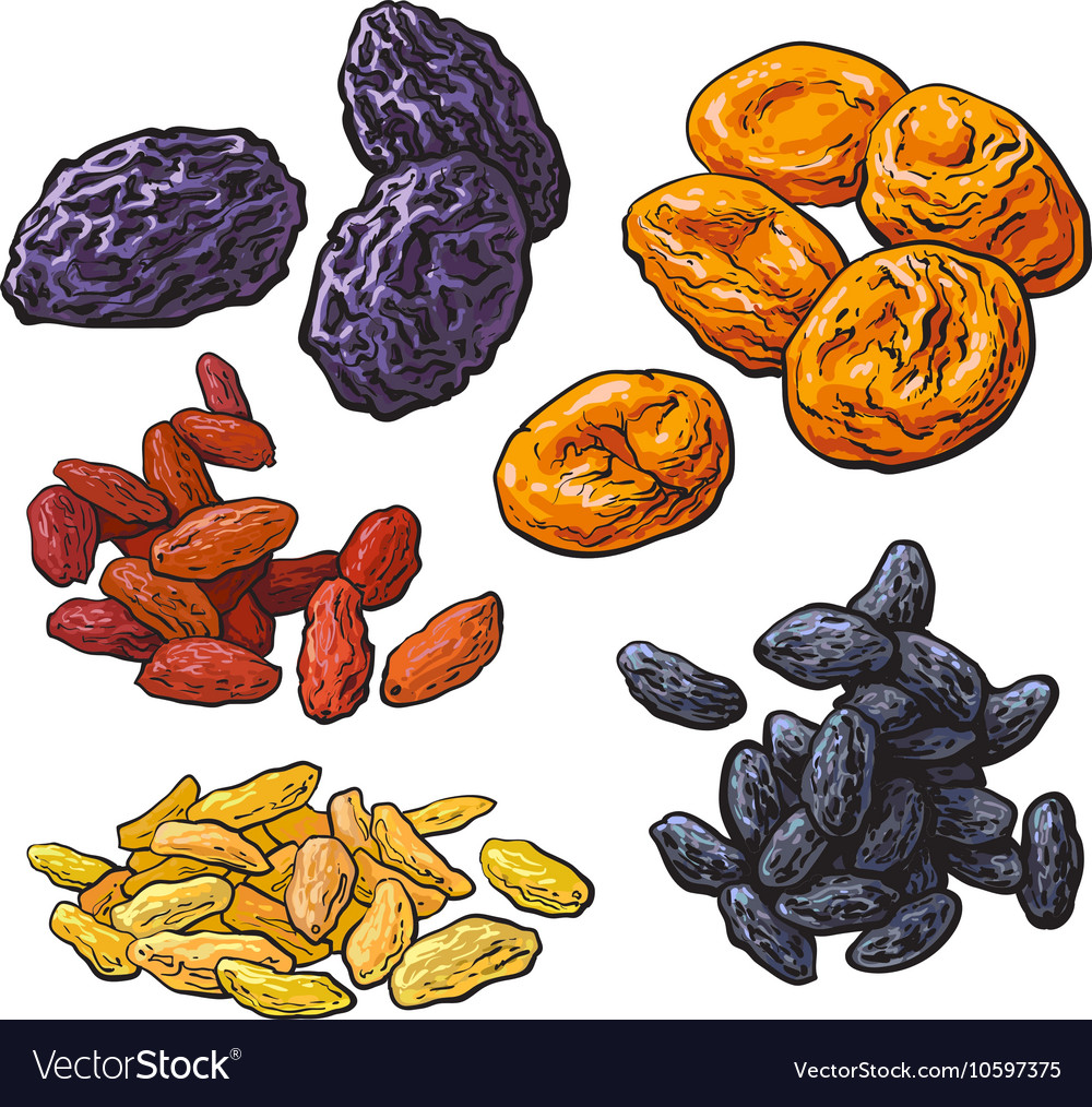 Set of dried fruits - prunes apricots and raisins vector image