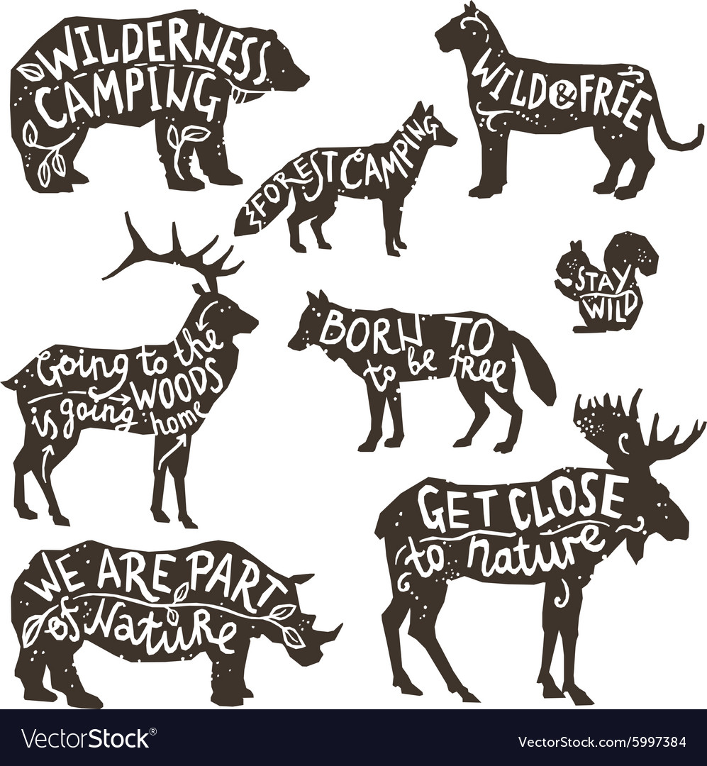 Wild Animals Silhouettes With Lettering vector image