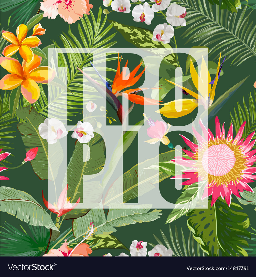 Tropical floral summer graphic vector image