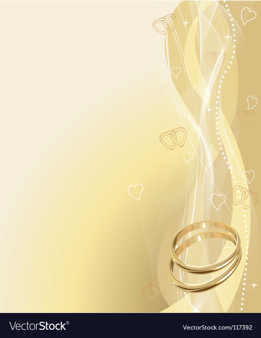Wedding rings background vector image