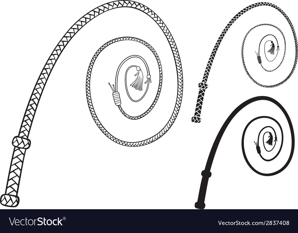 Braided leather whip vector image