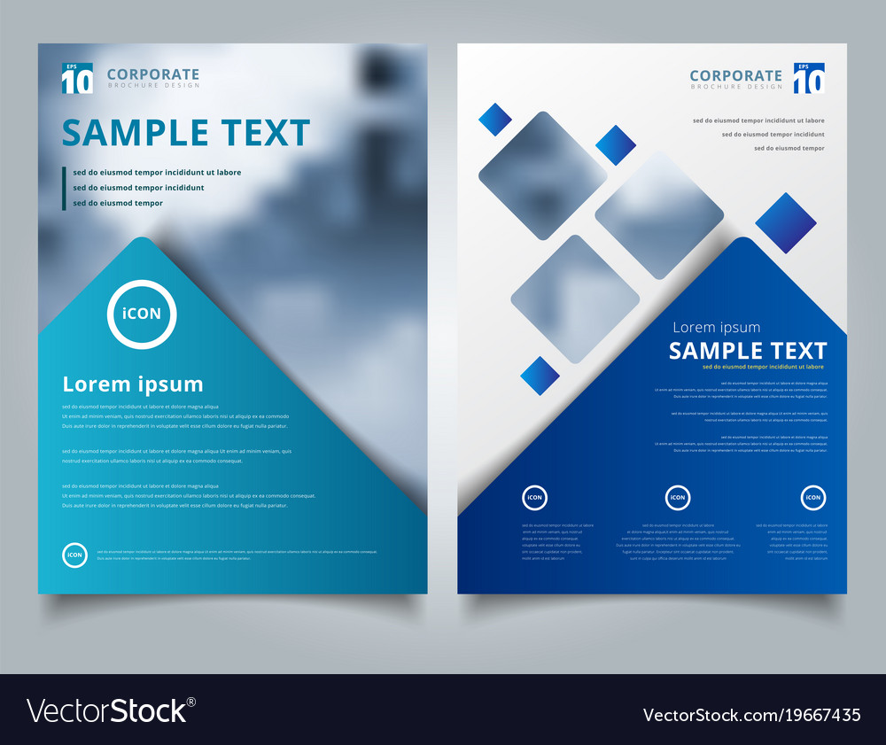Brochure Layout Design Template Annual Report Vector Image - Brochure layout template