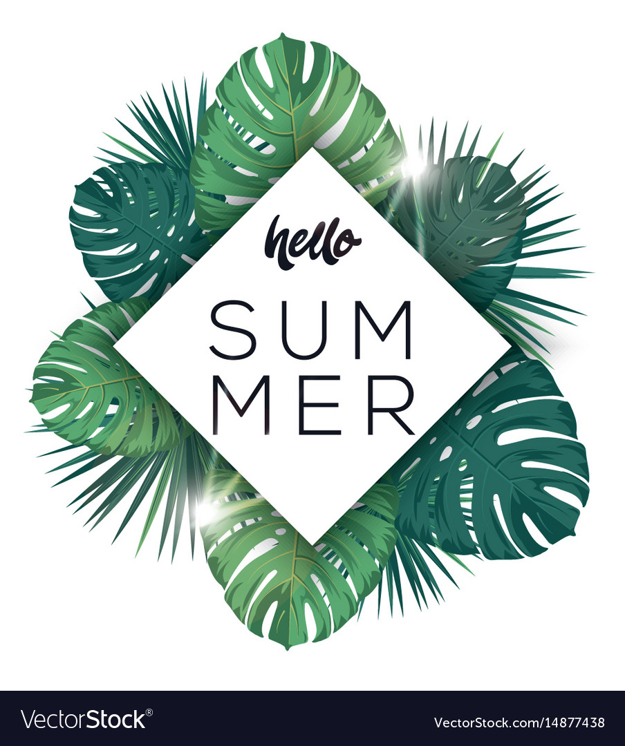 Hello summer poster tropic leaves with sunshine vector image