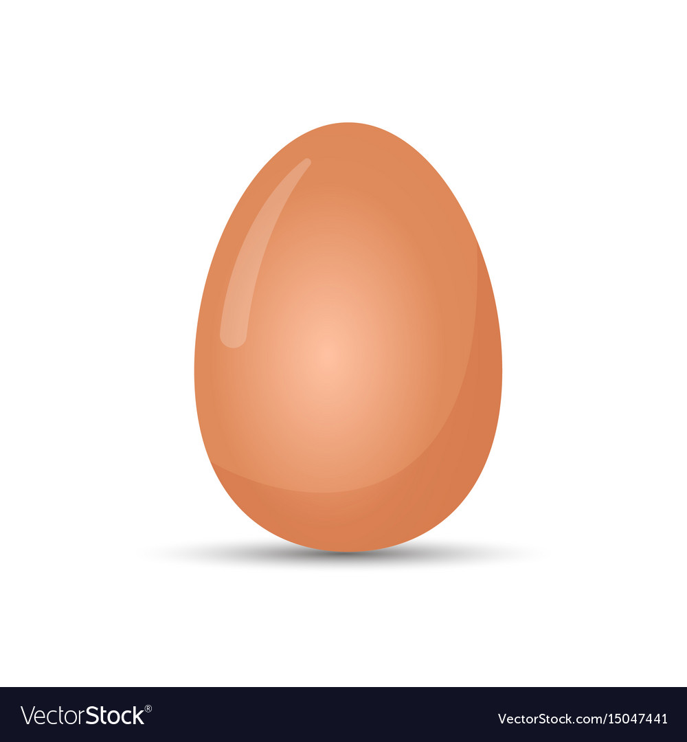 Boiled egg realistic isolated vector image