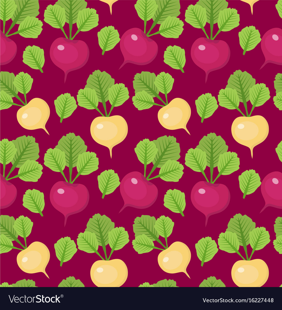 Radish seamless pattern red and white radishes vector image