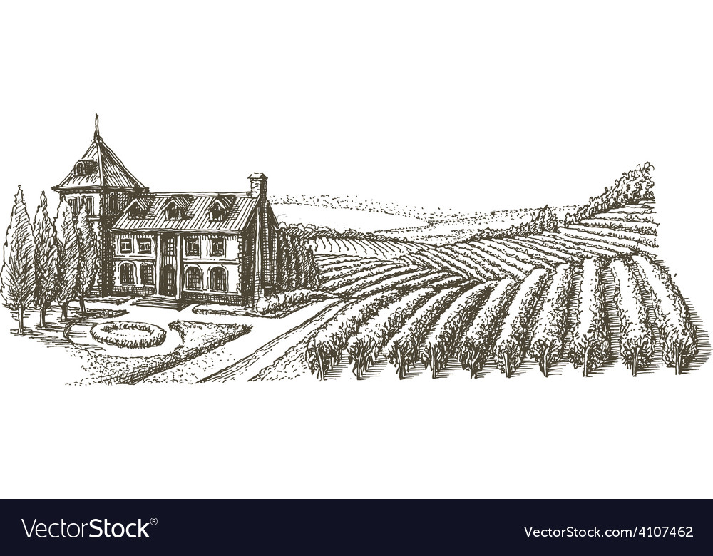 Vineyard logo design template village or vector image