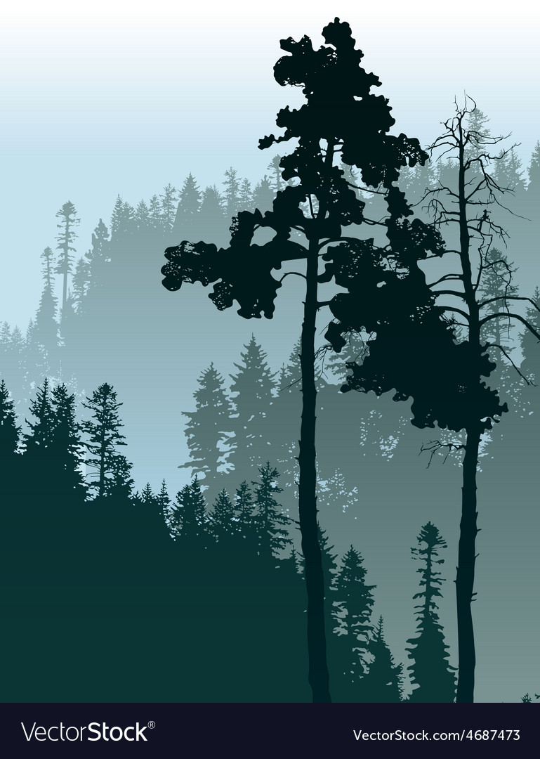Forest landscape vector image