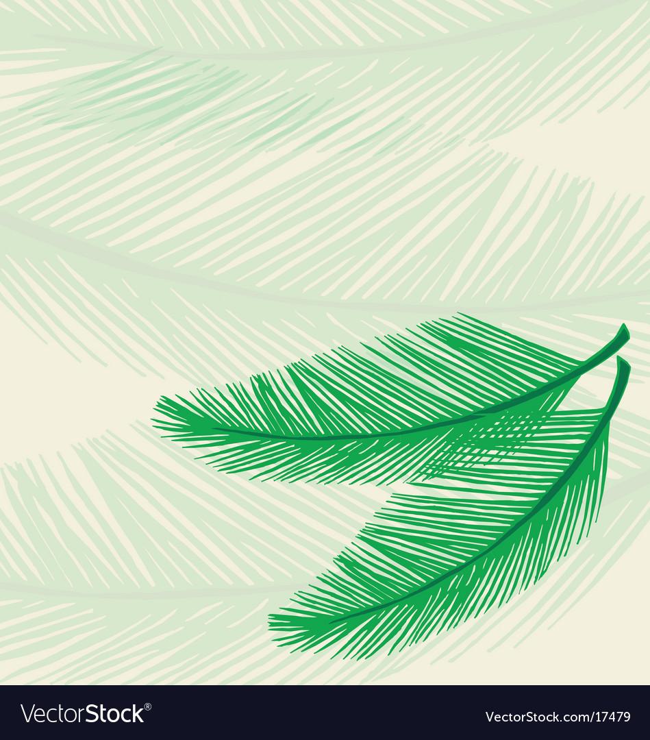 Plam leaf background vector image