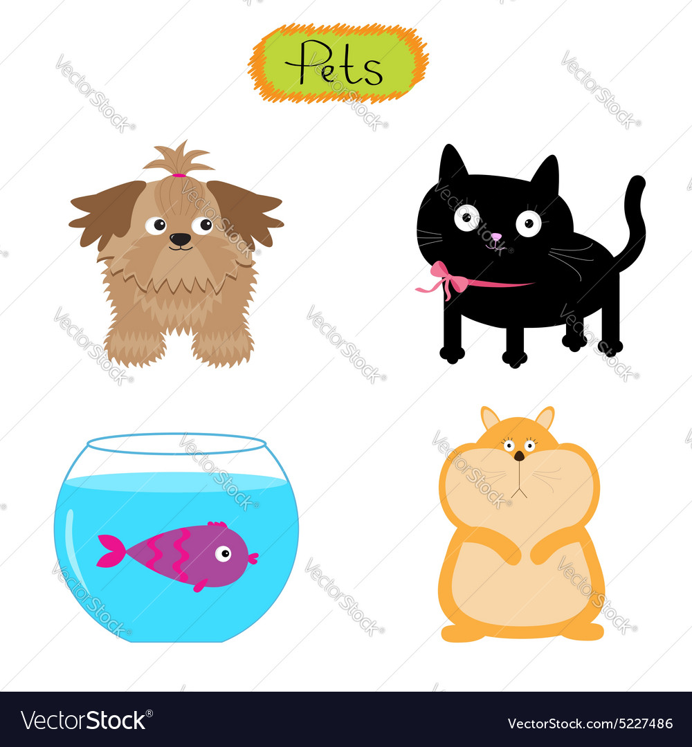 Pets isolated Cute set White vector image