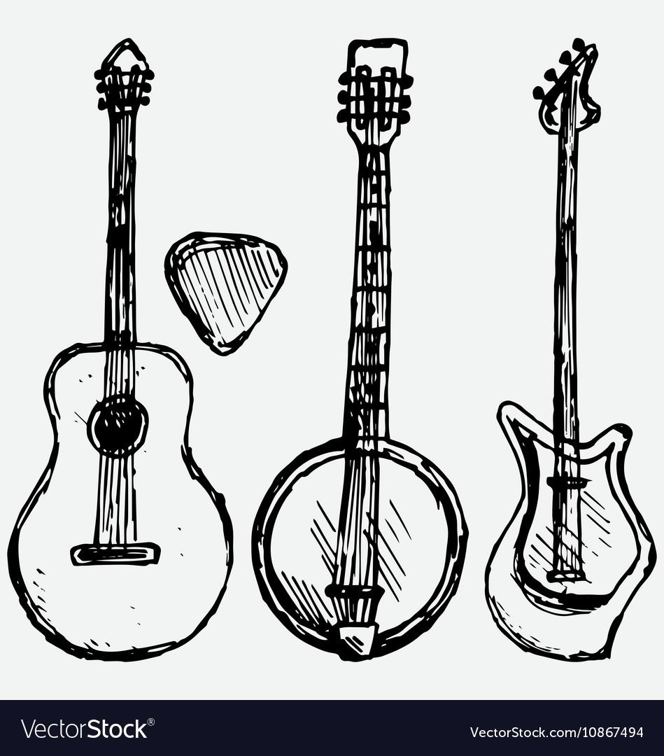 Guitar plectrum guitar and banjo vector image