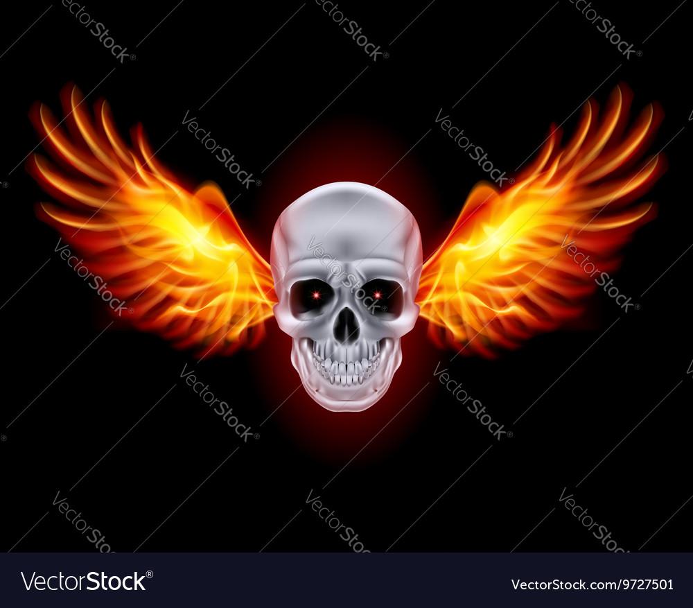 Mysterious dark Chrome metal skull wings 01 vector image