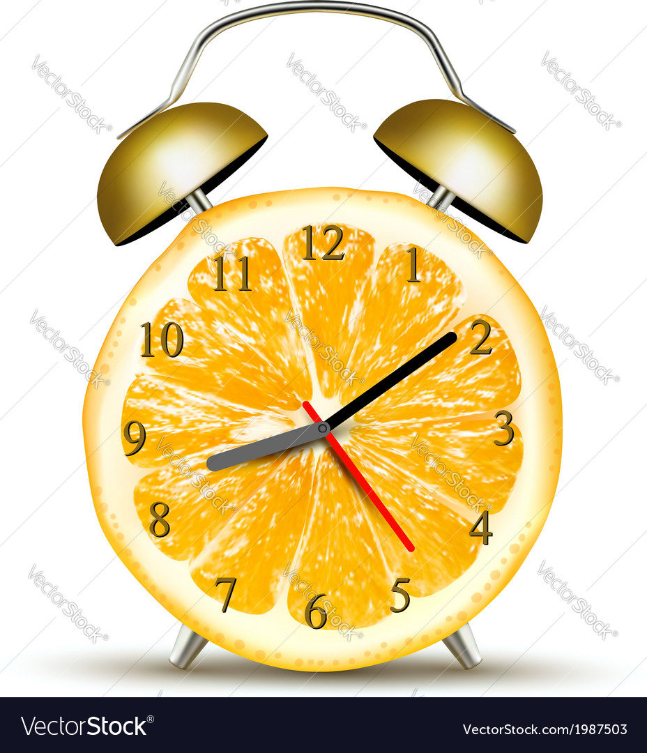 Alarm clock made of an orange Concept of diet vector image