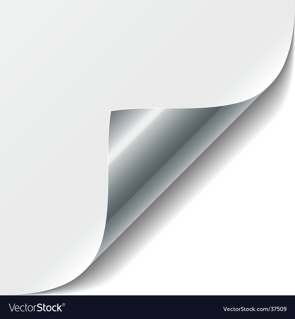 White page corner vector image