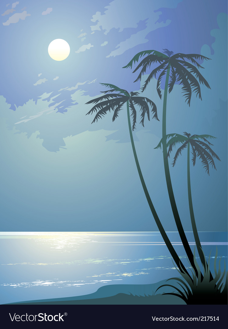 Tropical night vector image