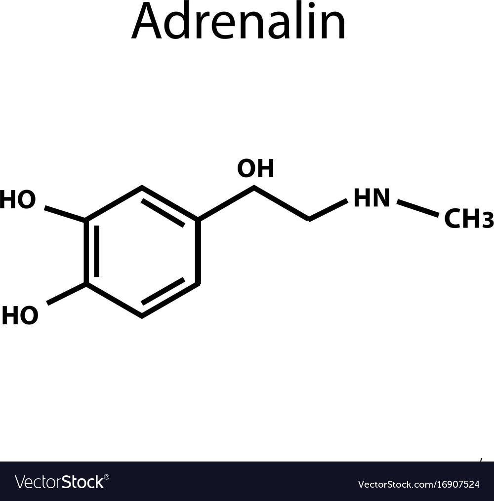 Adrenaline is a hormone chemical formula vector image adrenaline is a hormone chemical formula vector image buycottarizona