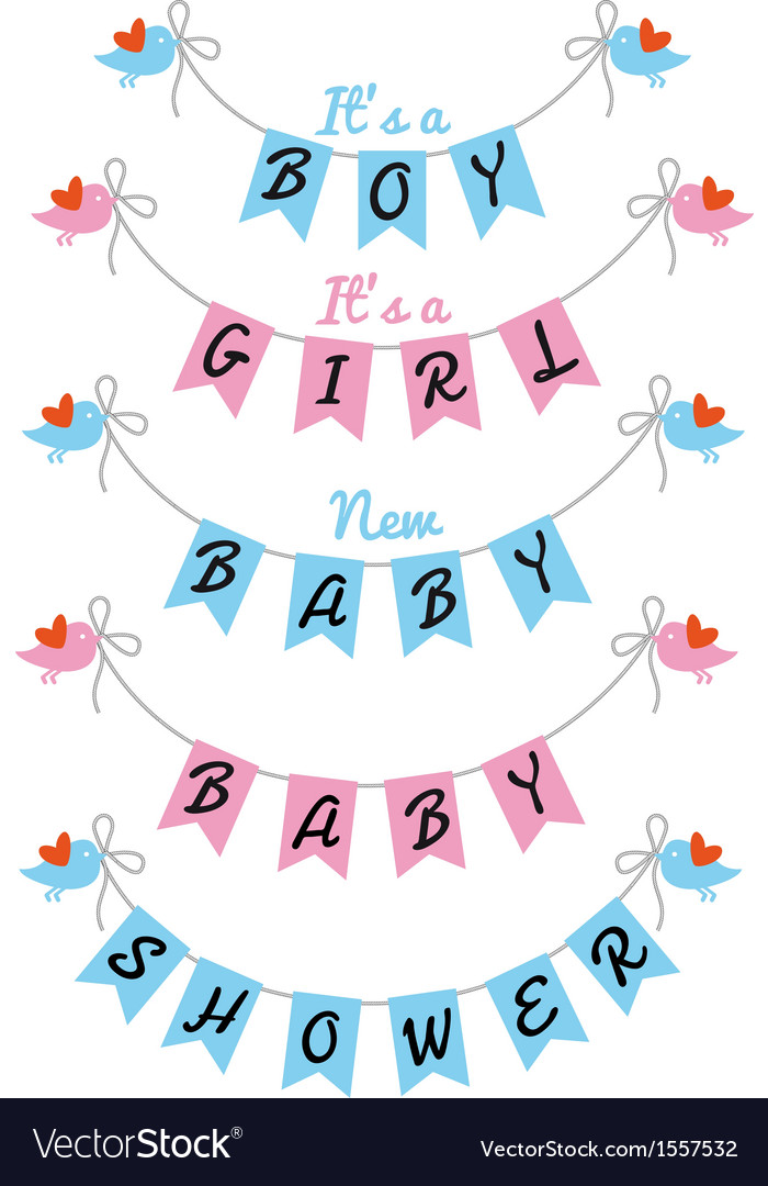 New baby cute birds with bunting flags vector image