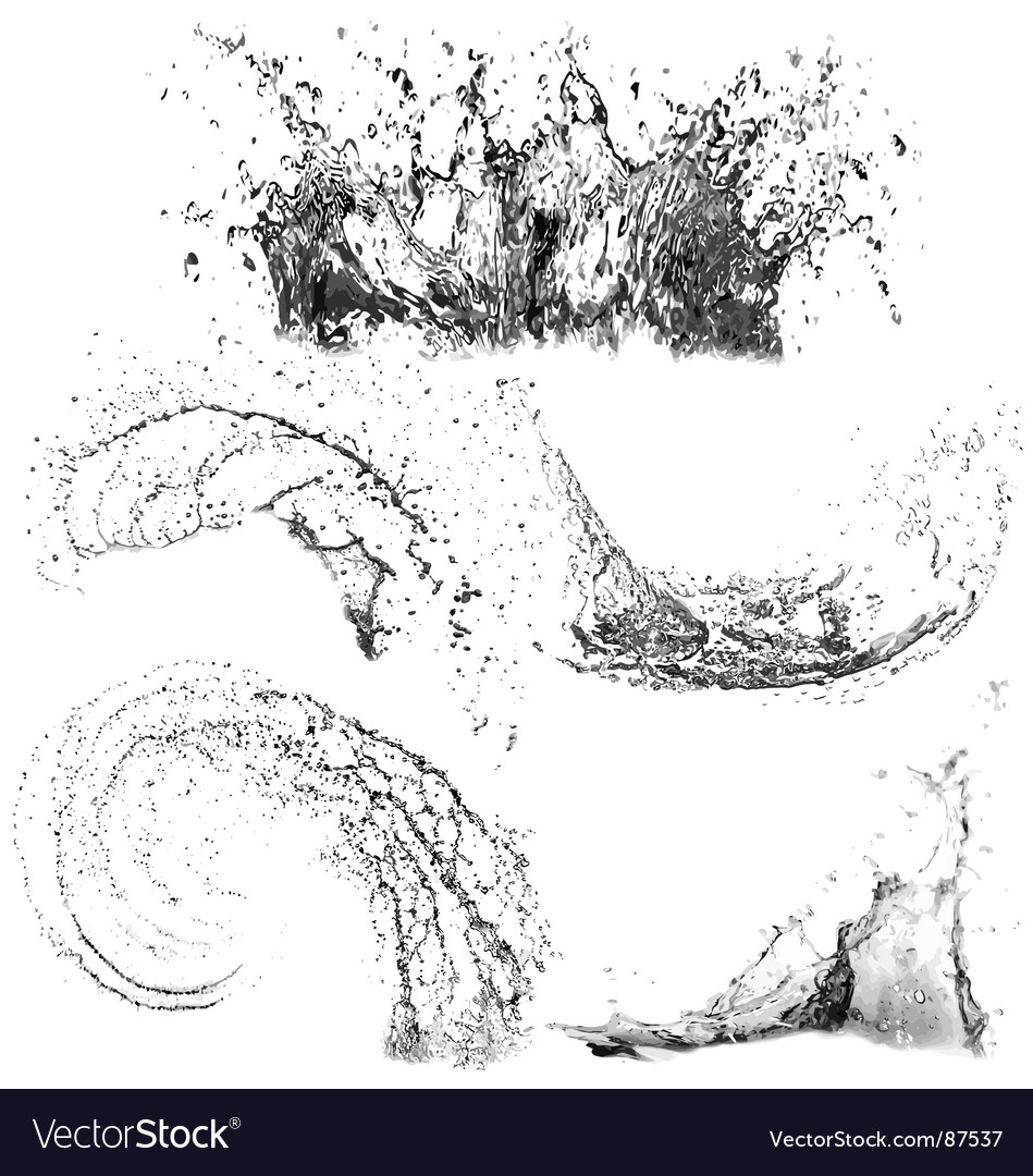 Splashes of water vector image