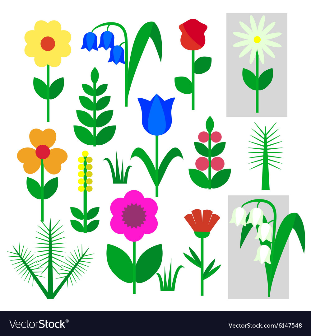 Set of flowers insulated painted on a white vector image