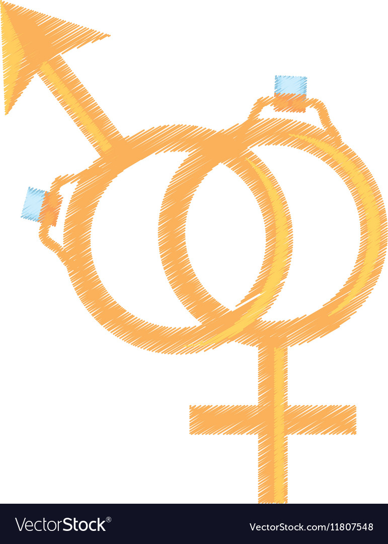Symbol sex female male ring wedding design vector image