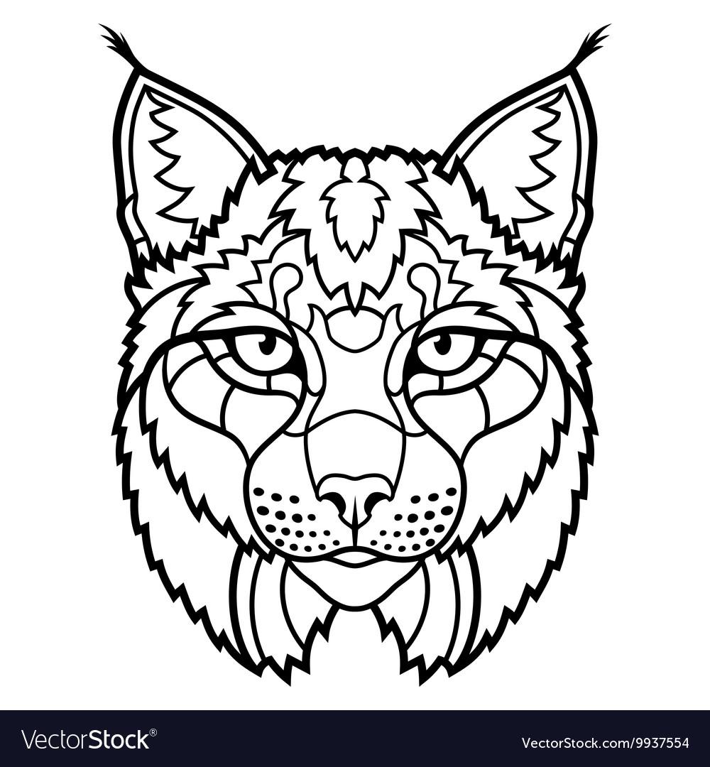 Wildcat lynx mascot head isolated sketch line art vector image