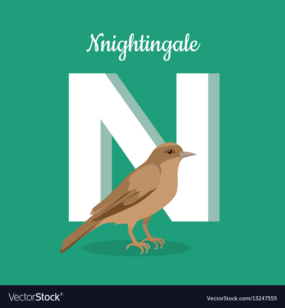 Animals alphabet letter - n vector image